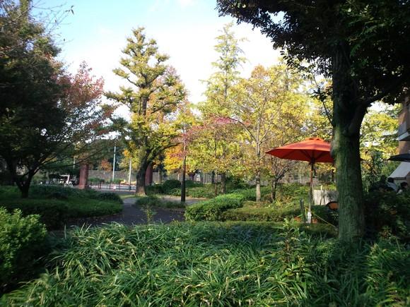妙義山の絵、東京 紅葉_d0193569_16175982.jpg