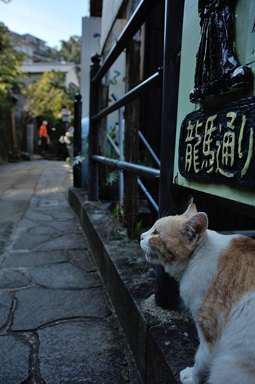 長崎市 龍馬通り_d0116871_107079.jpg