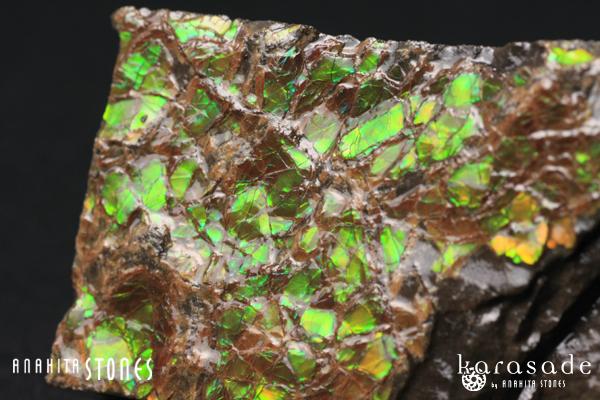アンモライト原石(カナダ産)_d0303974_1783820.jpg
