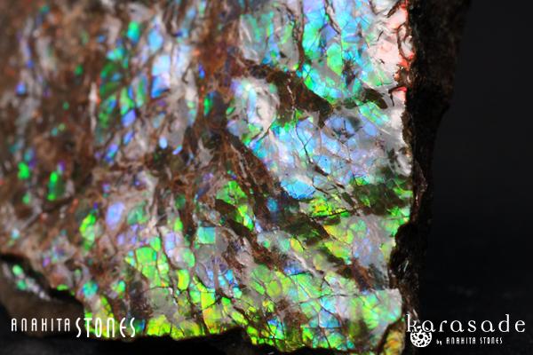 アンモライト原石(カナダ産)_d0303974_1791829.jpg