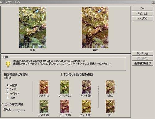 f0159784_112278.jpg