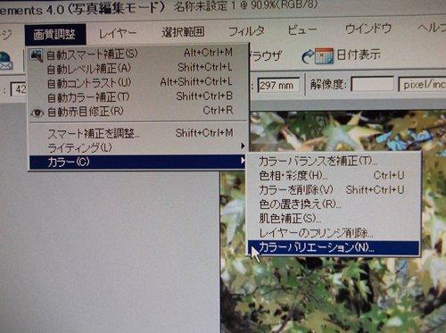 f0159784_1124257.jpg