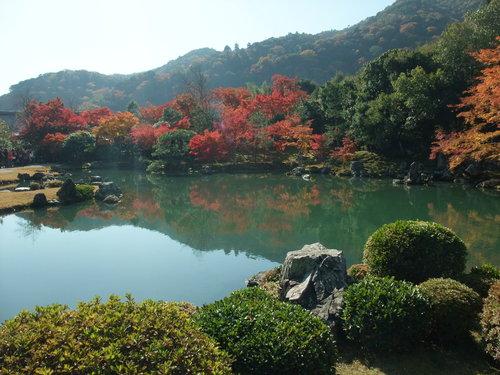 秋の京都_d0105395_21183936.jpg