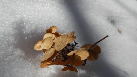 サンセットが綺麗な季節_e0120896_07101990.jpg