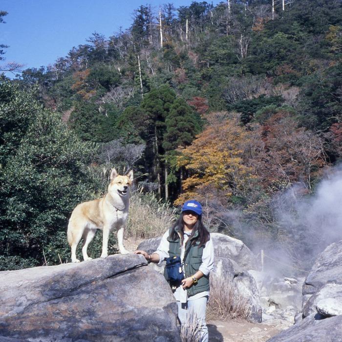 犬連れのはじまり_c0049299_19194494.jpg