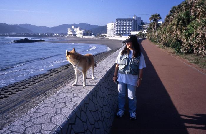 犬連れのはじまり_c0049299_1984339.jpg