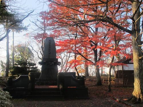晩秋、千秋公園の紅葉・黄葉・落葉のルクス(lux)・・・その8_c0075701_6235311.jpg
