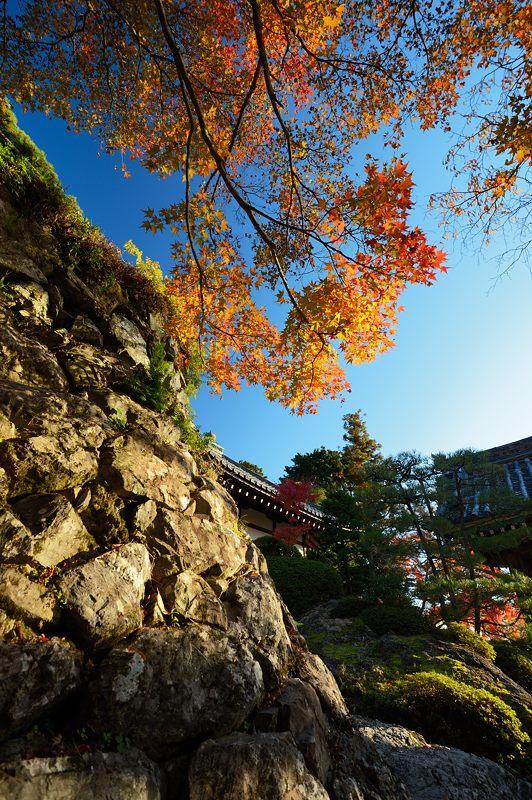 2013京都の紅葉!・善峰寺 其の二_f0032011_19342076.jpg