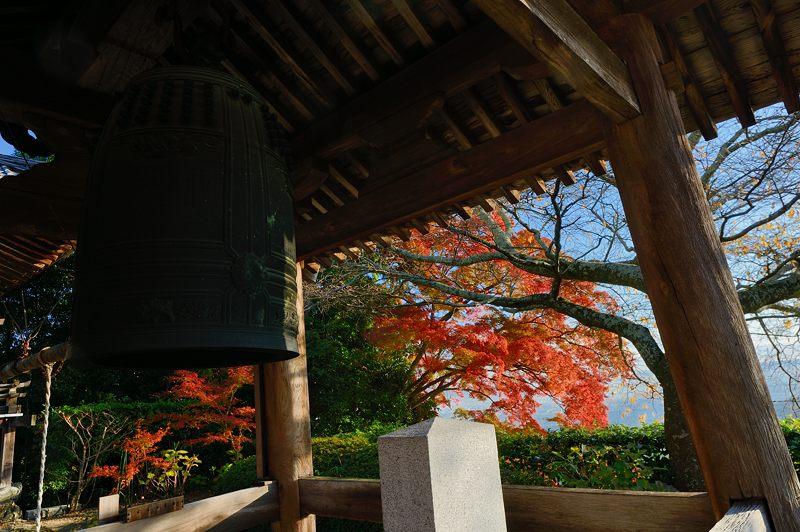 2013京都の紅葉!・善峰寺 其の二_f0032011_193652.jpg