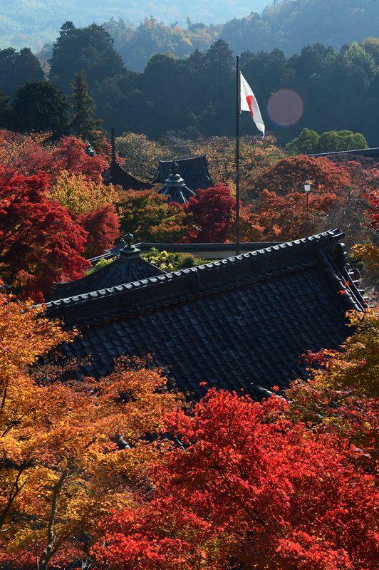 2013京都の紅葉!・善峰寺 其の二_f0032011_19375654.jpg