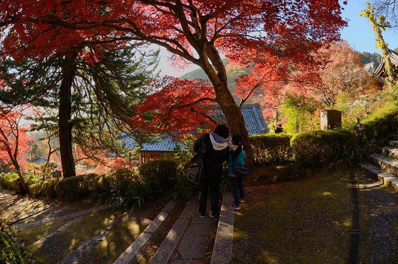 2013京都の紅葉!・善峰寺 其の二_f0032011_19385848.jpg