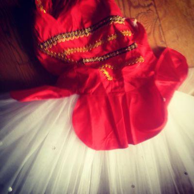 Ballet_f0015215_15491240.jpg
