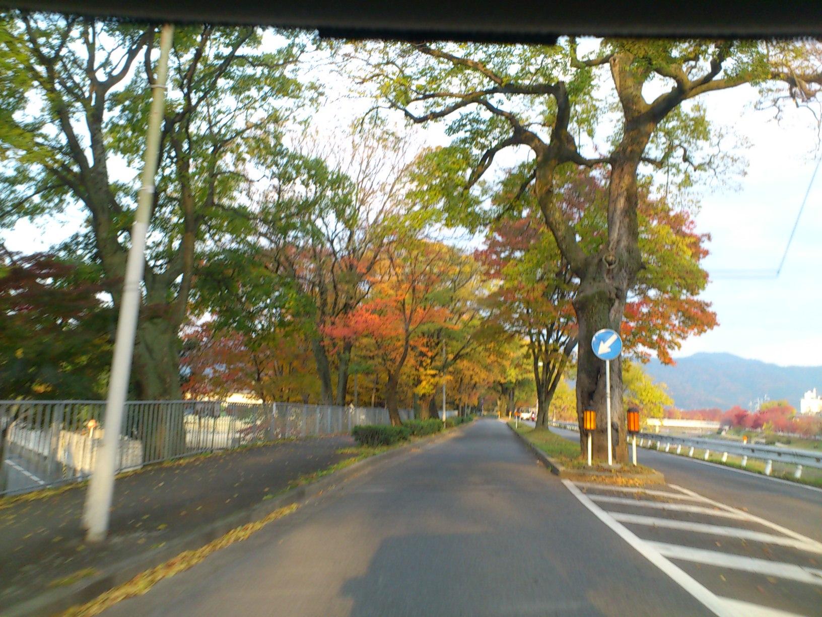 上賀茂神社のてづくり市ありがとうございました。_e0128024_929597.jpg