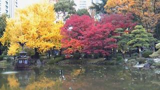 日比谷公園の池と噴水_f0133526_17493957.jpg