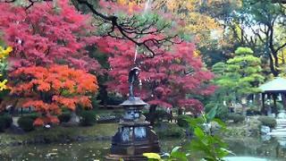 日比谷公園の池と噴水_f0133526_17495572.jpg