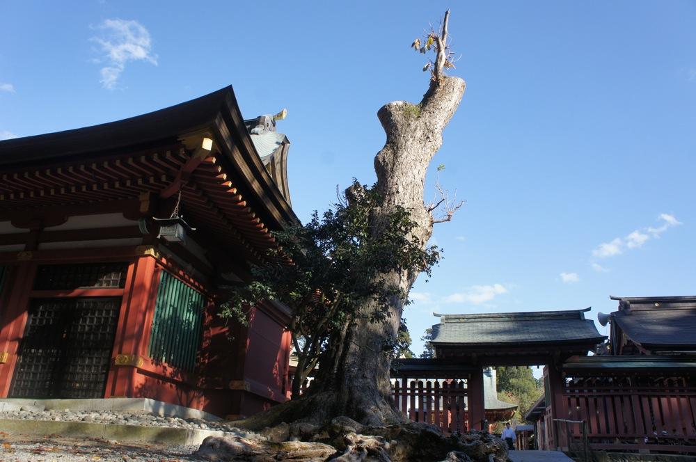 鹽竈神社 本殿へ向かう_d0001843_23201272.jpg