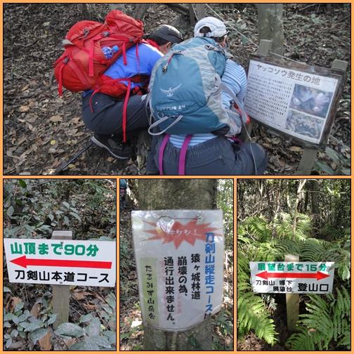 南九州の山旅・①・・・・刀剣山_e0164643_1201813.jpg