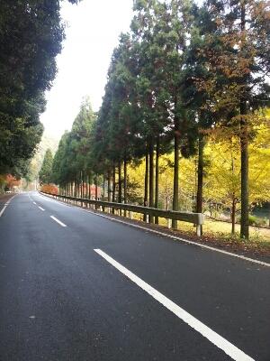 秋のドライブコース_c0172049_21191727.jpg