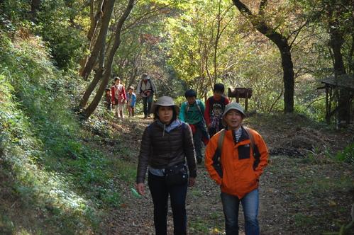 「きのくに子どもNPO」が孝子の森にやってっ来た     by     (TATE-misaki)_c0108460_2293580.jpg