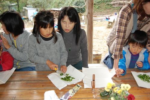 「きのくに子どもNPO」が孝子の森にやってっ来た     by     (TATE-misaki)_c0108460_2324987.jpg