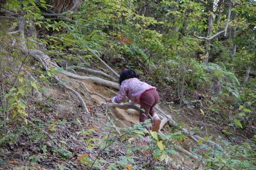 「きのくに子どもNPO」が孝子の森にやってっ来た     by     (TATE-misaki)_c0108460_2522982.jpg
