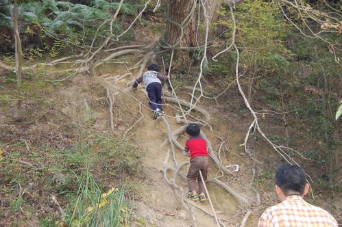 「きのくに子どもNPO」が孝子の森にやってっ来た     by     (TATE-misaki)_c0108460_2545250.jpg