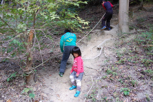 「きのくに子どもNPO」が孝子の森にやってっ来た     by     (TATE-misaki)_c0108460_2551861.jpg