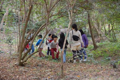 「きのくに子どもNPO」が孝子の森にやってっ来た     by     (TATE-misaki)_c0108460_3112370.jpg