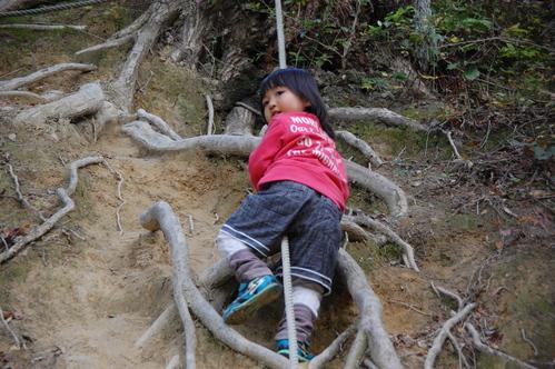 「きのくに子どもNPO」が孝子の森にやってっ来た     by     (TATE-misaki)_c0108460_38437.jpg