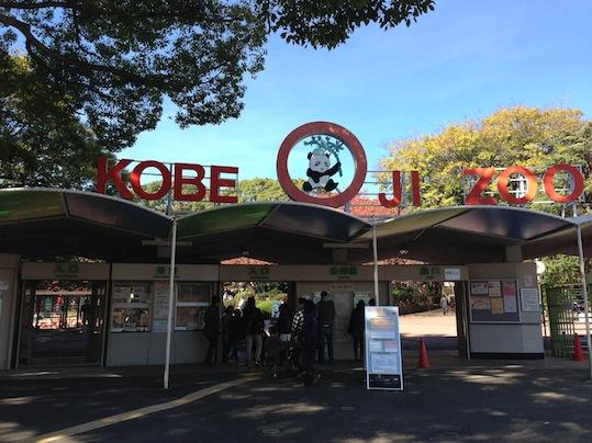 神戸王子動物園_d0069964_22283873.jpg