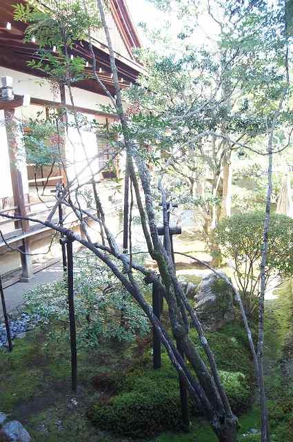大覚寺へ_e0181373_19134488.jpg