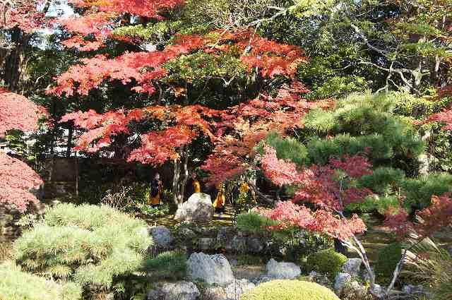 大覚寺へ_e0181373_19311415.jpg