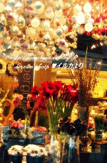 f0304384_72577.jpg
