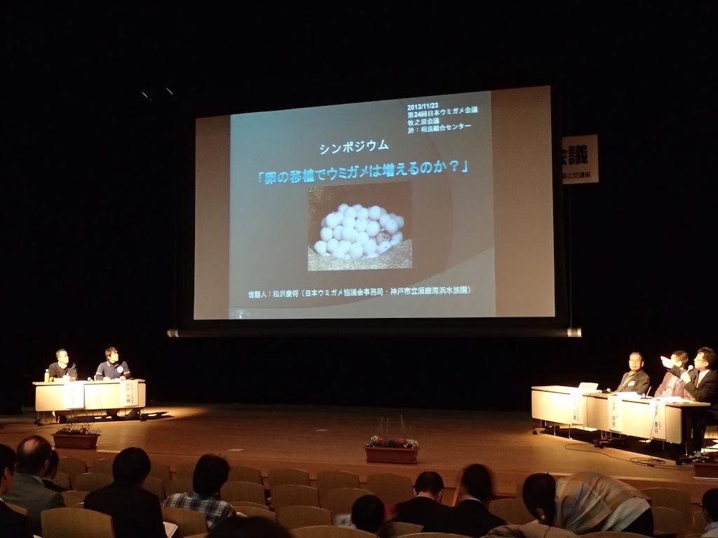 11/22-24 第24回日本ウミガメ会議in牧之原_a0010095_2249481.jpg