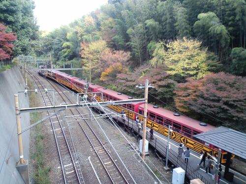 秋の京都_d0105395_419991.jpg
