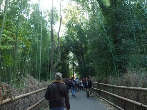 秋の京都_d0105395_4214334.jpg