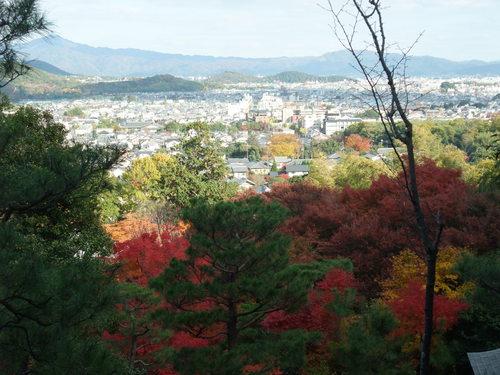 秋の京都_d0105395_485786.jpg
