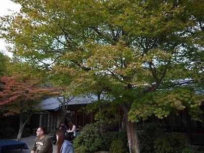 京都 大河内山荘_a0233896_12465848.jpg