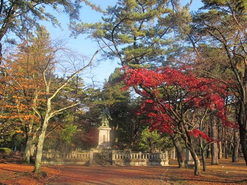 晩秋、千秋公園の紅葉・黄葉・落葉のルクス(lux)・・・その9_c0075701_2191122.jpg