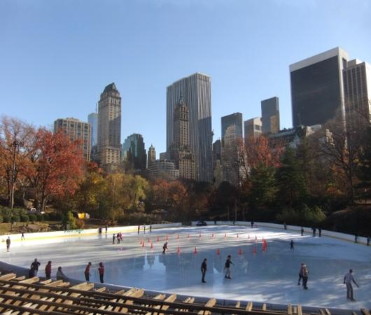 紅葉と摩天楼とスケートリンクを一望できるセントラルパークのオススメ写真スポット_b0007805_1255387.jpg