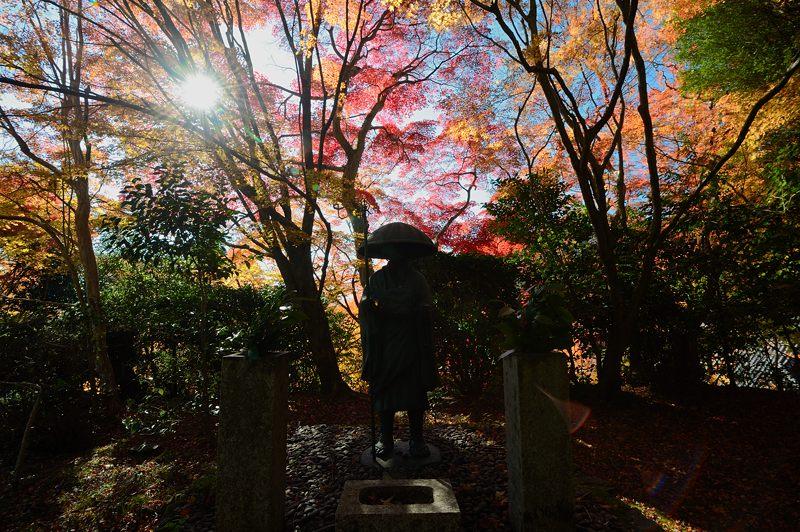2013京都の紅葉!・金蔵寺 其の一_f0032011_2010471.jpg