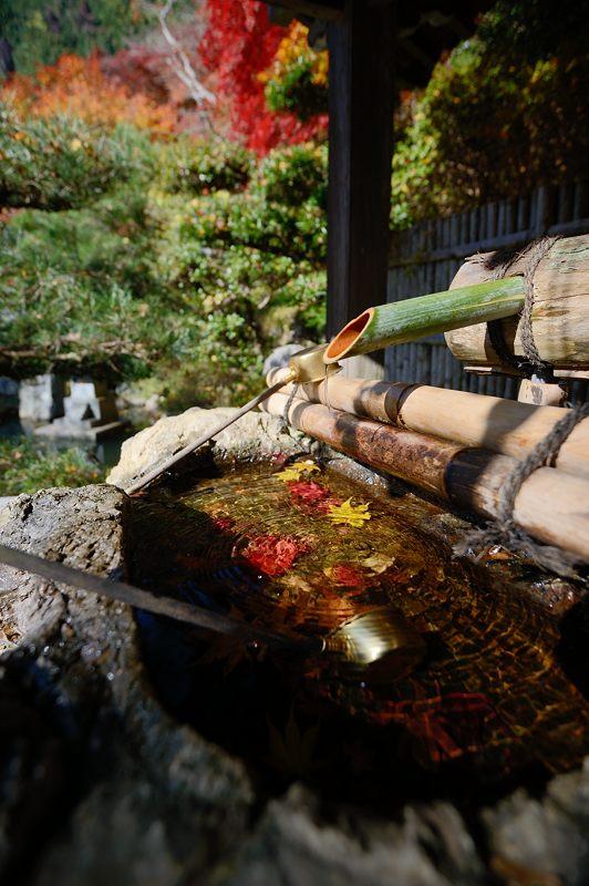 2013京都の紅葉!・金蔵寺 其の一_f0032011_20112058.jpg