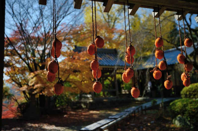 2013京都の紅葉!・金蔵寺 其の一_f0032011_20113330.jpg