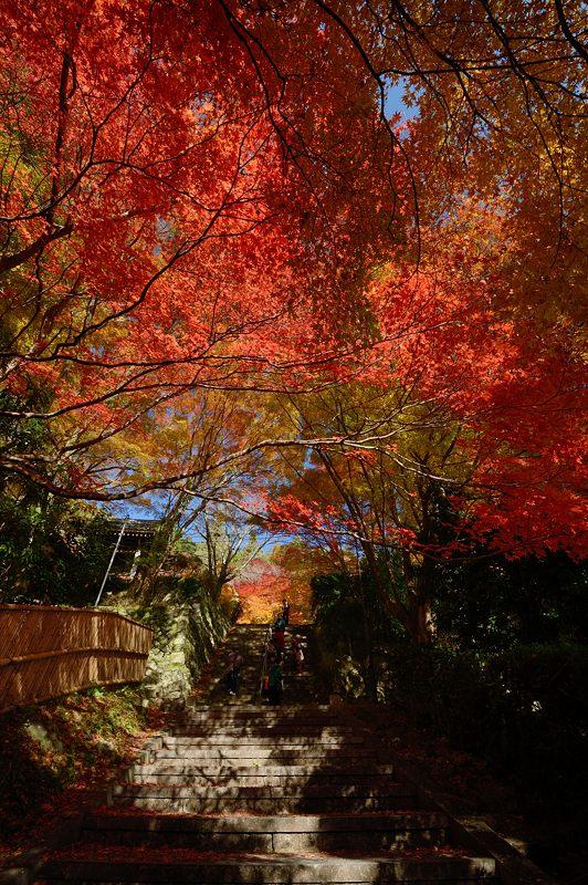 2013京都の紅葉!・金蔵寺 其の一_f0032011_2035466.jpg