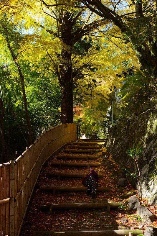 2013京都の紅葉!・金蔵寺 其の一_f0032011_20515100.jpg