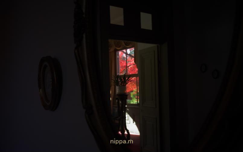明治村の紅葉・・です_a0258534_2025094.jpg