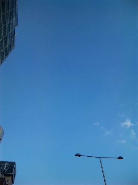 blog:青山のど真ん中_a0103940_1544527.jpg