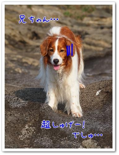 d0013149_23204260.jpg