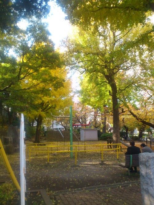 公園ランチ_b0246953_16114189.jpg