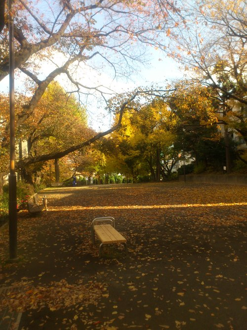 公園ランチ_b0246953_1614615.jpg